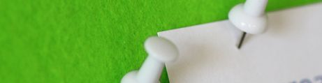 Vert lime, profil blanc
